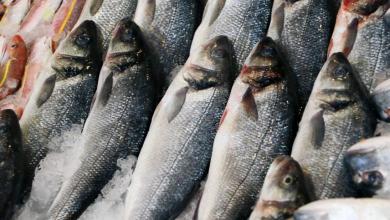 Balık Tüketmek İçin 5 Önemli Neden Nedir?